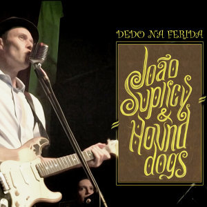 João  Suplicy & Hounddogs 歌手頭像