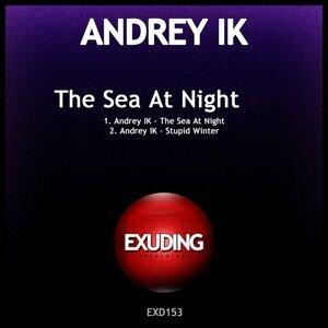 Andrey IK 歌手頭像