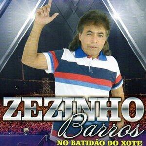 Zezinho Barros 歌手頭像