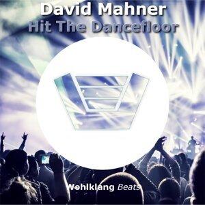 David Mahner 歌手頭像