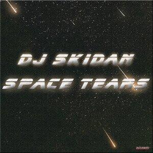 DJ Skidan 歌手頭像