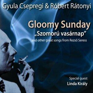 Csepregi Gyula/Rátonyi Róbert 歌手頭像