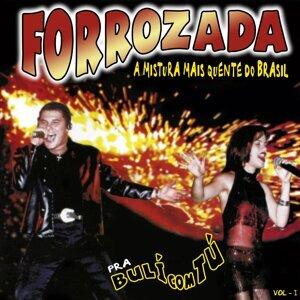 Forrozada 歌手頭像