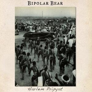 Bipolar Bear 歌手頭像