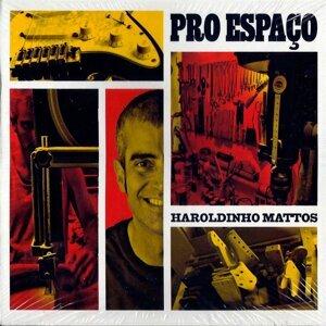 Haroldinho Mattos 歌手頭像