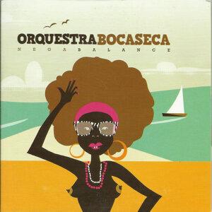 Orquestra Boca Seca 歌手頭像