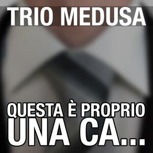 Trio Medusa 歌手頭像