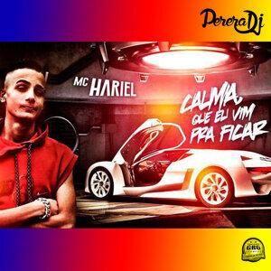 Mc Hariel & Perera DJ 歌手頭像
