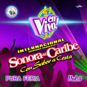 Internacional Marimba Orquesta Sonora del Caribe 歌手頭像