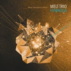 Melt Trio - Meyer, Baumgärtner, Meyer 歌手頭像