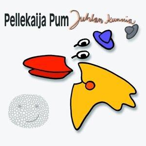 Pellekaija Pum 歌手頭像