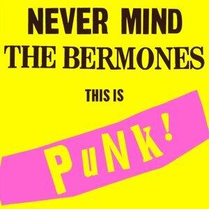 The Bermones 歌手頭像