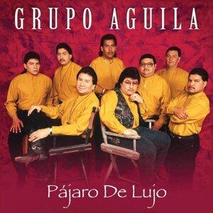 Grupo Aguila 歌手頭像