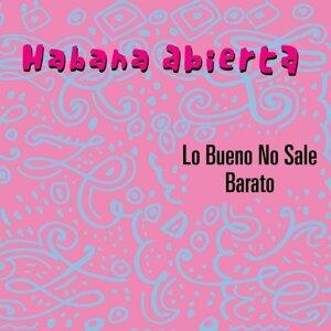 Habana Abierta 歌手頭像