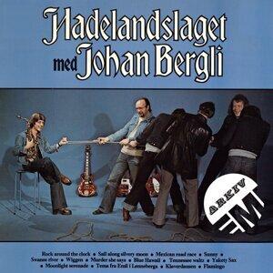 Hadelandslaget/Johan Bergli 歌手頭像