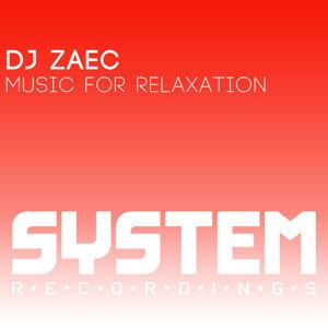 DJ Zaec 歌手頭像