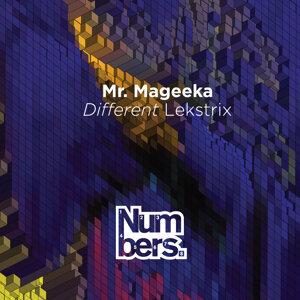 Mr Mageeka