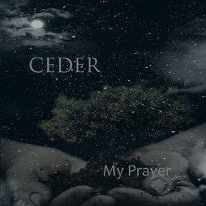 Ceder 歌手頭像