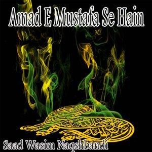 Saad Wasim Naqshbandi 歌手頭像