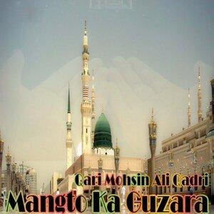 Qari Mohsin Ali Qadri 歌手頭像