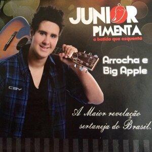 Junior Pimenta 歌手頭像