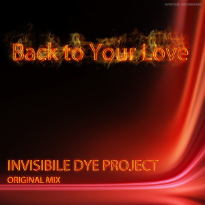 Invisible Dye project 歌手頭像