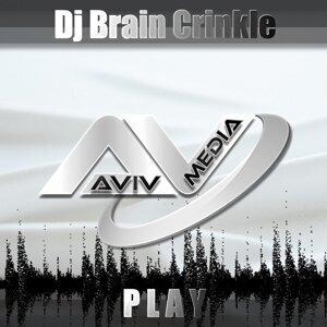 DJ Brain Crinkle 歌手頭像