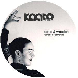 Sonic & Wooden 歌手頭像