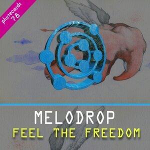 Melodrop 歌手頭像