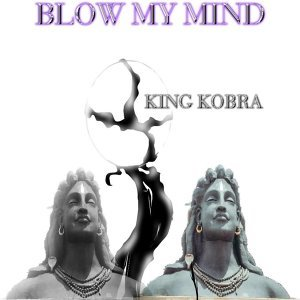 King Kobra 歌手頭像