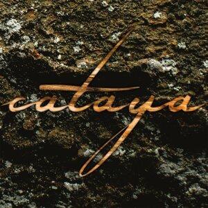 Cataya 歌手頭像