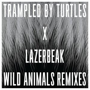 Trampled By Turtles, Lazerbeak 歌手頭像