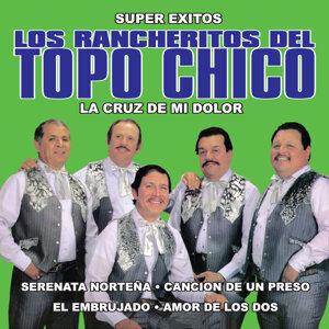 Los Rancheritos Del Topo Chico 歌手頭像