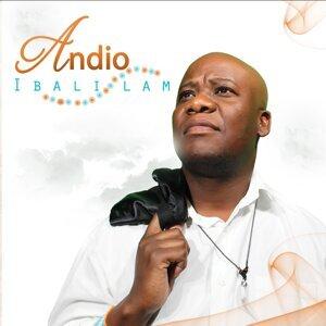 Andio 歌手頭像