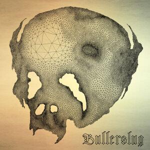Bullerslug 歌手頭像