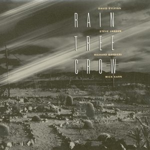 Rain Tree Crow 歌手頭像