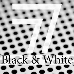 EasyWay (EW), Eduard Guchetl, Marco Marzulli, Patrick Cross, Andy Gis, Steve Tvist, Teamat, AresWusic, DJ Nikita Noskow, Fcode, Laenas Prince, Mogler, Petr Kaidash, Serzh-G, The Provence 歌手頭像