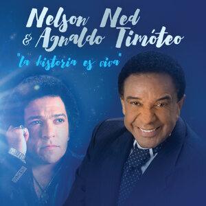 Nelson Ned & Agnaldo Timóteo 歌手頭像