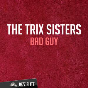 The Trix Sisters 歌手頭像