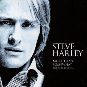 Steve Harley 歌手頭像