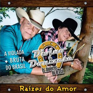 Divino e Donizete 歌手頭像