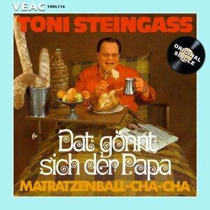 Toni Steingass 歌手頭像