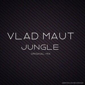 Vlad Maut 歌手頭像