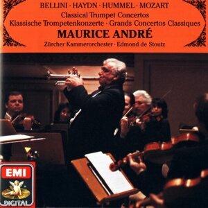 Maurice André/Das Zürcher Kammerorchester/Edmond de Stoutz 歌手頭像