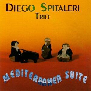 Diego Spitaleri Trio 歌手頭像