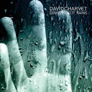 David Charvet 歌手頭像
