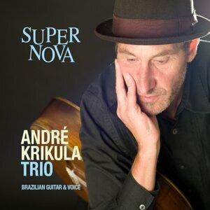 André Krikula Trio 歌手頭像