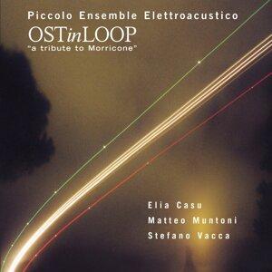 Piccolo Ensemble Elettroacustico (Elia Casu, Matteo Muntoni, Stefano Vacca) 歌手頭像