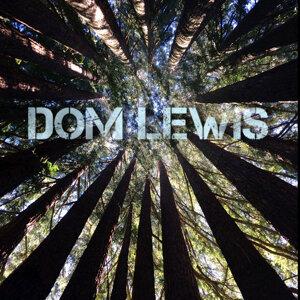 Dom Lewis 歌手頭像