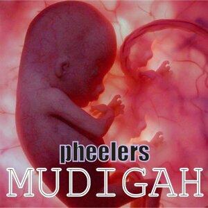 Pheelers 歌手頭像